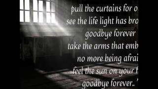 Volbeat - Goodbye Forever