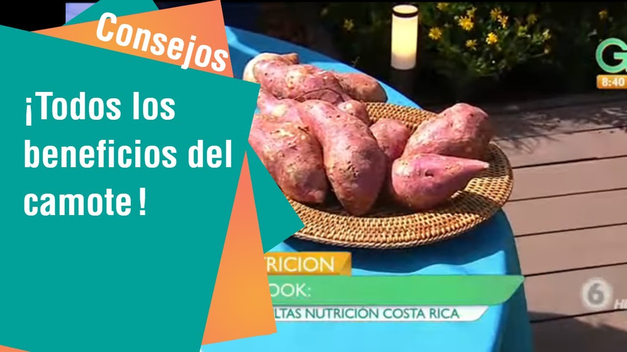beneficios del camote blanco