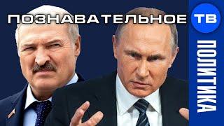 Почему Путин злой на Лукашенку? В чём провинился белорусский Батька?