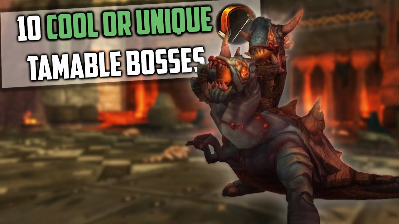 10 Cool Or Unique Tamable Bosses For Hunter Pets In Wow And How To Get Them Youtube