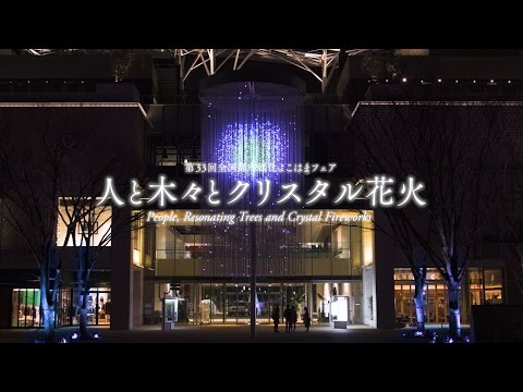 People, Resonating Trees and Crystal Fireworks / 人と木々とクリスタル花火