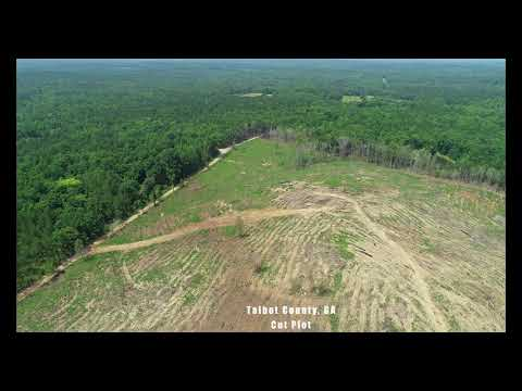 Talbot County Property