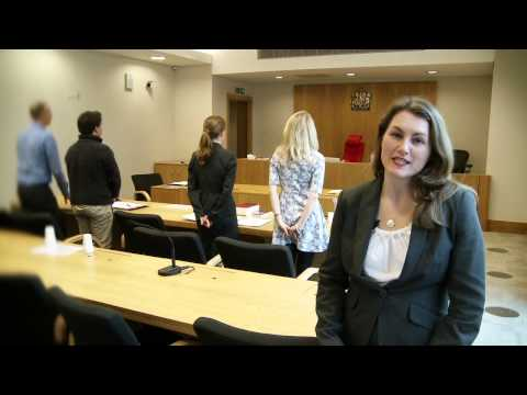 The Family Court without a Lawyer - Video 2 of 3