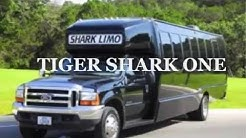 San Antonio Party Limo Bus Rental 210-226-5466