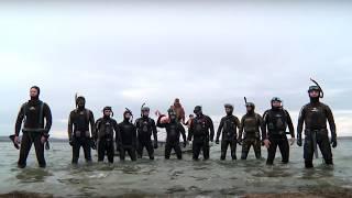 У Забайкальских подвохов тает лед - пародия на группу Грибы