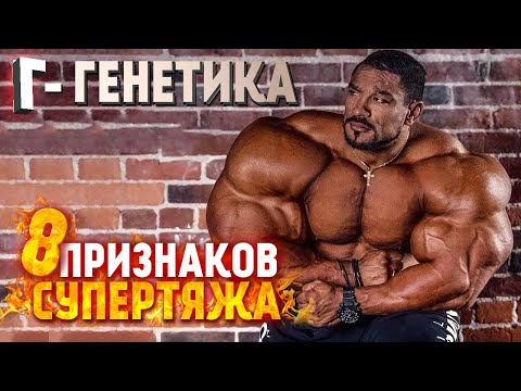 ГЕНЕТИКА РУЛЛИ ВИНКЛААРА / БИГ РАМИ