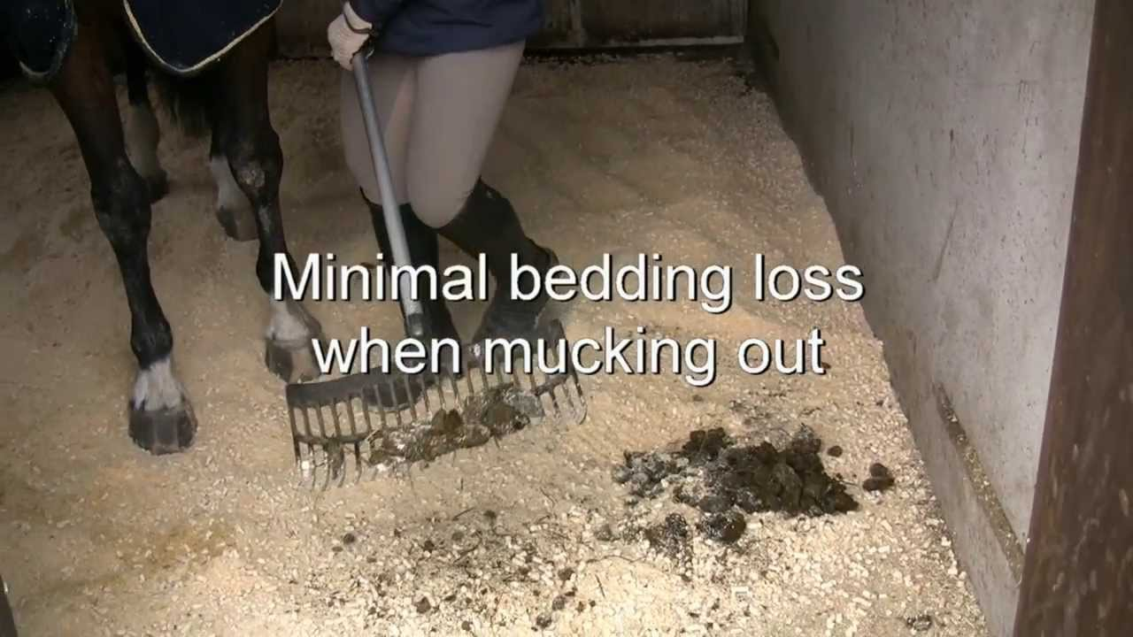 stall pellets superior bedding fr horses youtube - Horse Bedding
