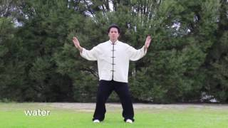 Five Element Qigong Wu Xing Qigong