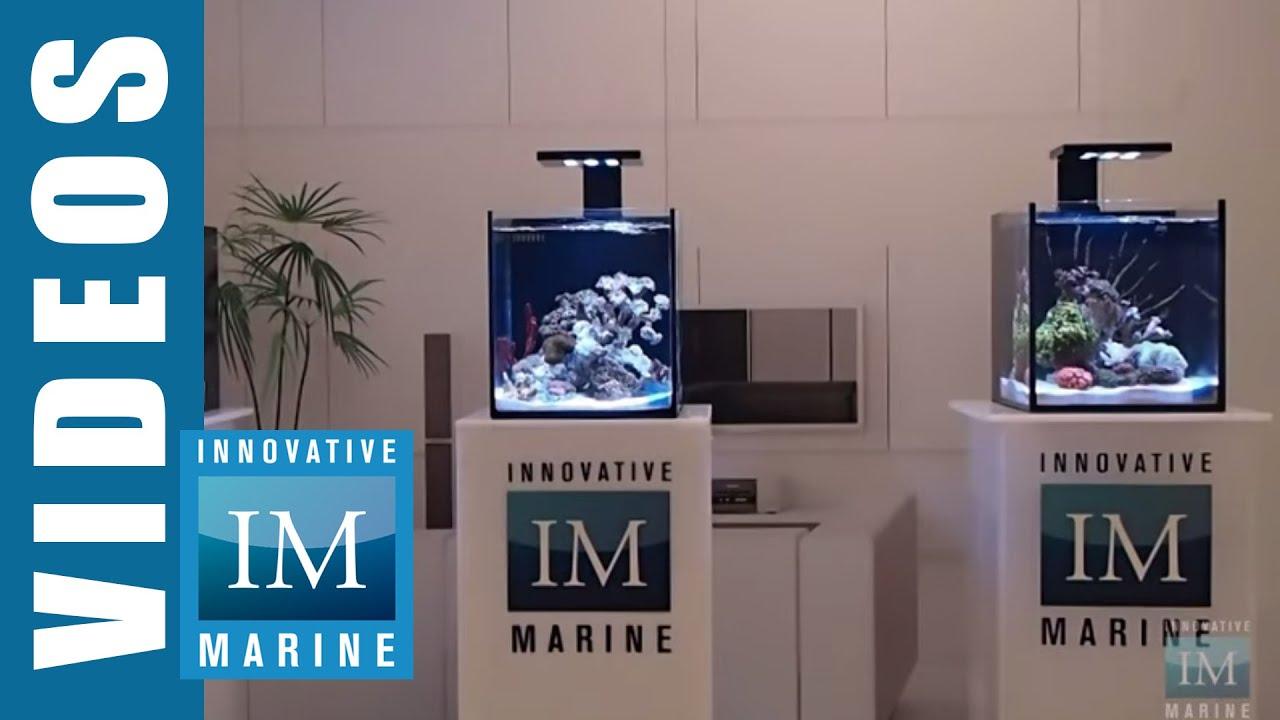 Innovative Marine Fusion Nano 10 Premium Starter Kit ...