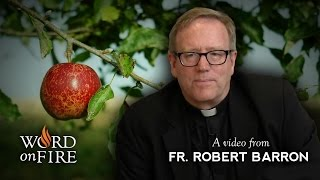 Fr. Robert Barron on Original Sin