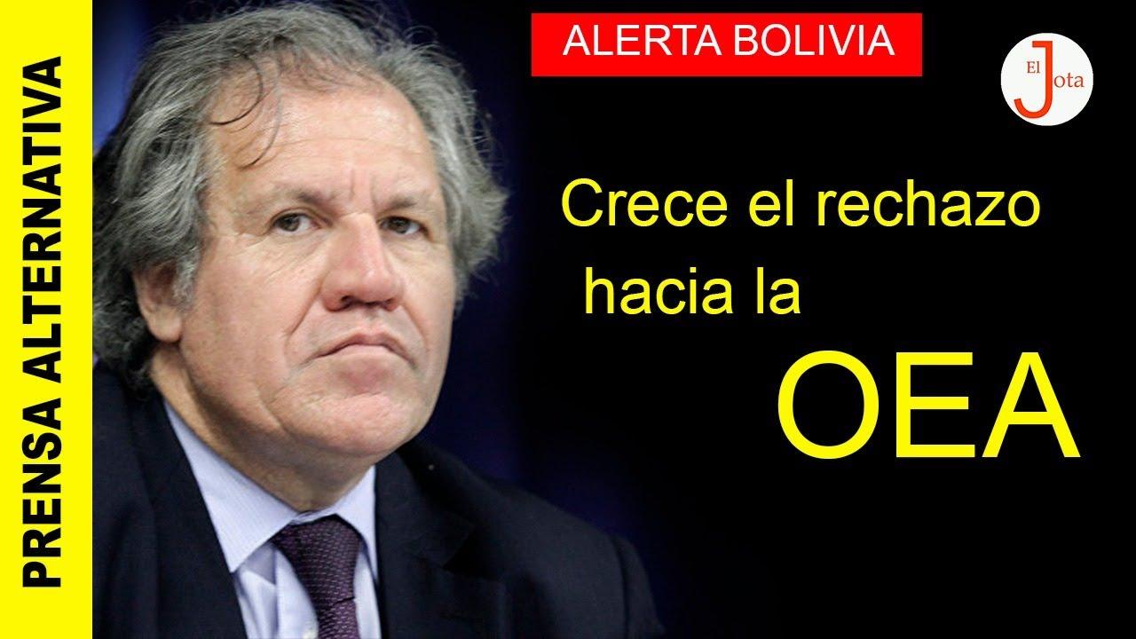 ¡Miles de ciudadanos firman para que la OEA se vaya de Bolivia!