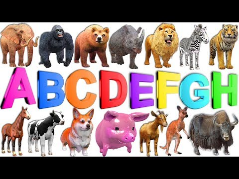 Learn ABC Alphabets A to Z for Kids Children - Learn Wild Animals Names & Sounds Nursery Rhymes