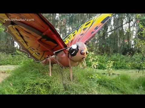 Butterfly park 4k HD New Opened in Srirangam Trichy Tamilnadu India 2017 Vlog