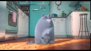 Тайная жизнь домашних животных 2016   Тизер трейлер online video cutter com
