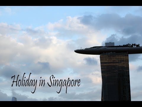Holiday in Singapore + Opinion