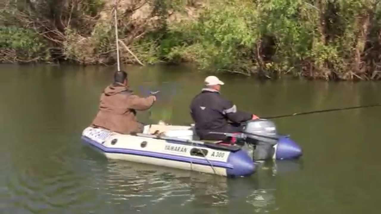 Буффало на поплавок в проводку как из пулемёта! Сентябрь 2014, Рыбалка на базе Ахтуба клуб
