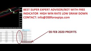 SUPER EXPERT-ADVISOR AUTOMATED FOREX TRADING 2020 Review 19