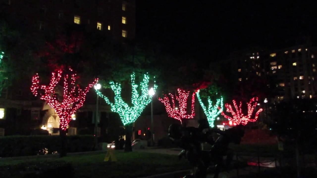 Huntington Park Tree Lighting Ceremony