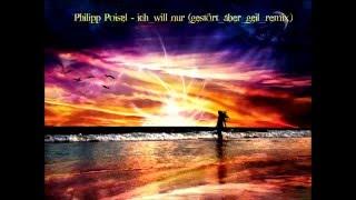 Philipp Poisel Ich will nur gestört aber geil remix