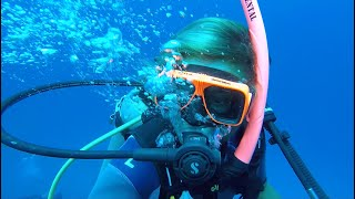 #wedive #divefriends PADI CERTIFICATION in BONAIRE. learning how to DIVE. Sailing Ocean Fox Ep 77