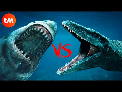 MEGALODON VS MOSASAURUS: Who's The KING Of The SEAS? |