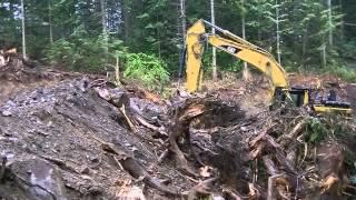 Logging Road pt.1