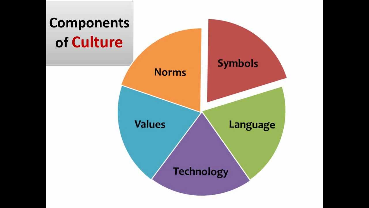 Components Of Culture Wmv
