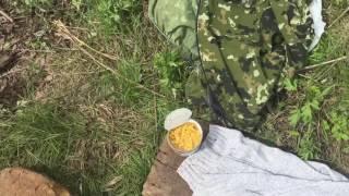 Ловля карпа в Самаре