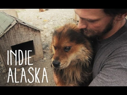 I Inherited a Sled Dog Team | INDIE ALASKA