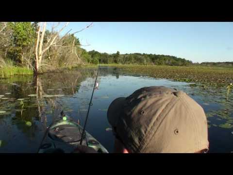 Kayak Bass Fishing - Capt Ken Designer Bass Frogs ...