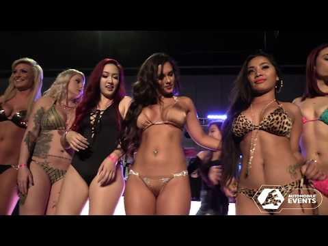 Hot Import Nights Bikini Contest - Tampa