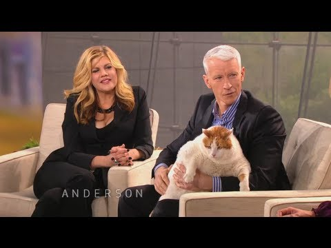 Dr. Stekettee's Tips for Owners with Overweight Pets