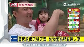 把握假期!初五動物園走春 貓熊區人潮滿|三立新聞台