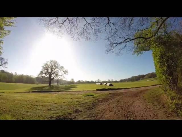 Somerford Park