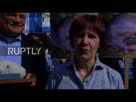 Germany: Berlin centre awarded 'Heart of Stone' for worst animal experiment
