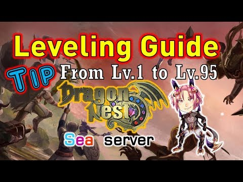 dragon nest training guide