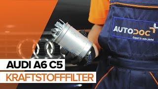 Wie AUDI A6 Avant (4B5, C5) Glühbirne Kennzeichenbeleuchtung austauschen - Video-Tutorial