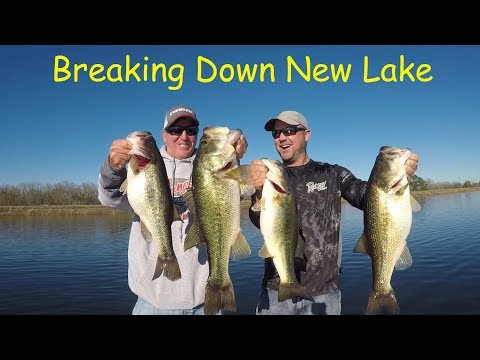 Breaking Down New Lake With Grass And Standing Timber! Lake Kurth Tx