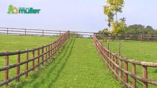 Quel portail choisir pour une prairie destinée aux chevaux ?