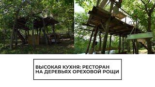Высокая кухня: ресторан на деревьях