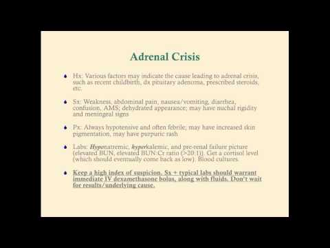Acute Adrenal Insufficiency - CRASH! Medical Review Series