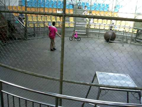 Hangzhou Zoo: Monkey on a Bike