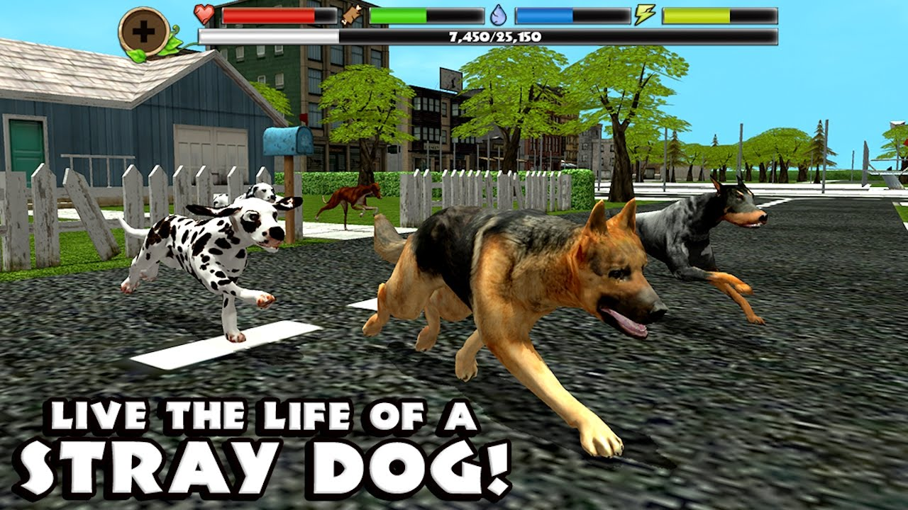 Free Dogs Games