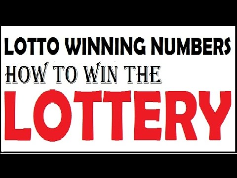 How to win the lottery - Lotto winning numbers - YouTube