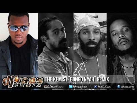 Stephen Marley Ft Damian Marley & Spragga Benz - Bongo Nyah [The Kemist Remix] January 2015
