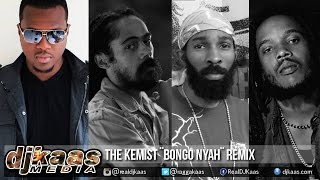 Stephen Marley ft Damian Marley & Spragga Benz - Bongo Nyah [The Kemist Remix] January 2015