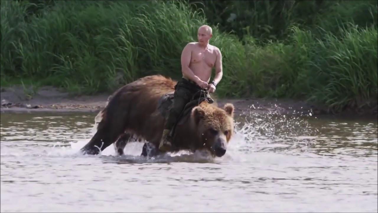 Putin Riding Bear Real Footage 2018 Youtube