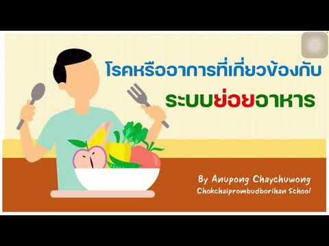 EP4 โรคหรืออาการที่เกี่ยวกับระบบย่อยอาหาร