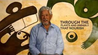 The Declaration of Interdependence: A Pledge to Planet Earth by David Suzuki and Tara Cullis