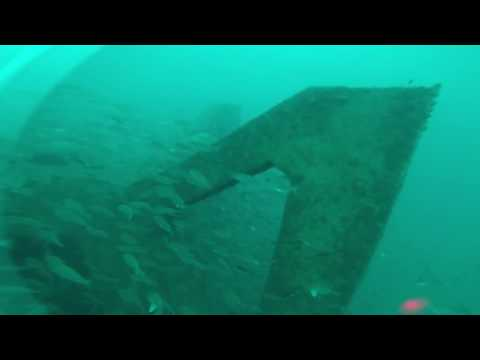 Port Macquarie offshore artificial reef 6 months after construction